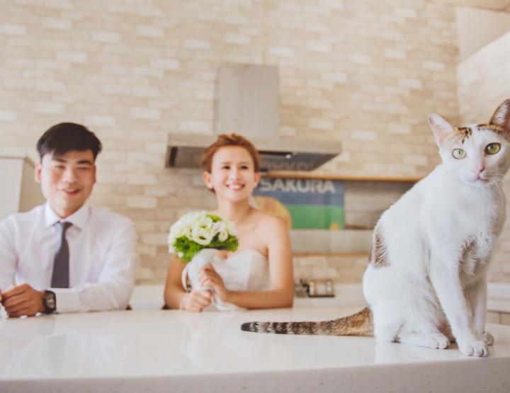 婚攝-雙人雙機 台南-東東宴會式場 一露忠憲.婚禮紀實 婚禮紀錄