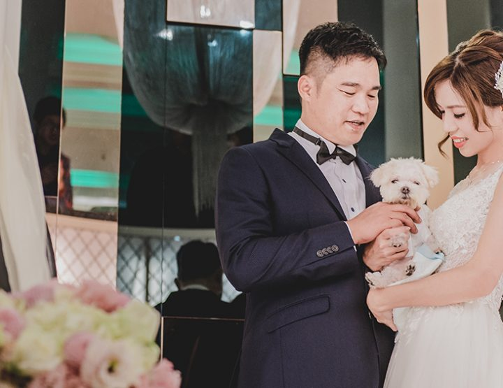 婚攝-雙人雙機│關渡-大河之戀皇后號│婚禮紀錄-渝婷嘉偉│麥克雷雙攝影